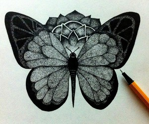 black and white, butterflies, and doodle image