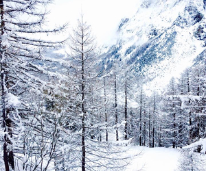 beautiful, cold, and italy image