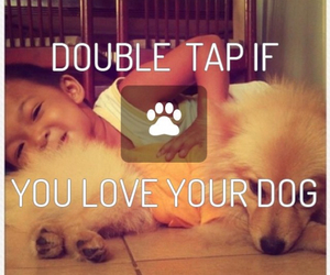 dogs, heart, and tumblr image