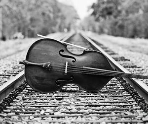 cello, music, and photography image
