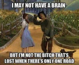 funny, lol, and Wizard of oz image