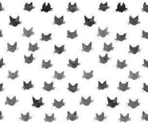 cat, wallpaper, and black and white image