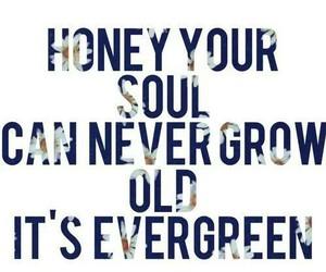 ed sheeran, thinking out loud, and Lyrics image