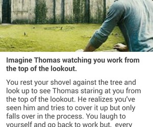 thomas, the maze runner, and the maze runner imagines image