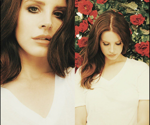 Collage, instagram, and lana del rey image
