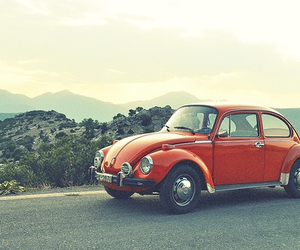 beetle, road, and travel image