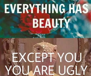 ugly and beauty image