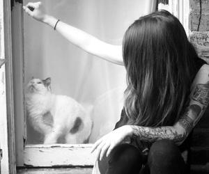 cat, grunge, and inked image