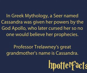 harry potter, cassandra, and seer image
