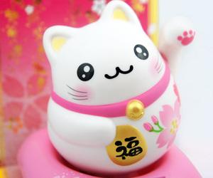 kawaii, cute, and cat image