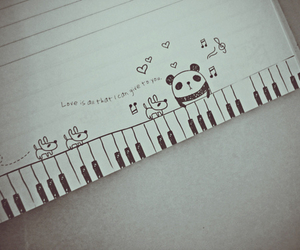 panda, cute, and music image