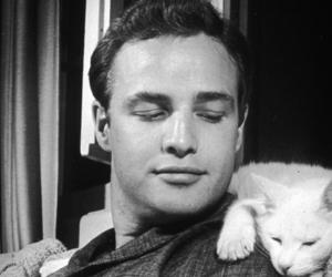 marlon brando, black and white, and cat image