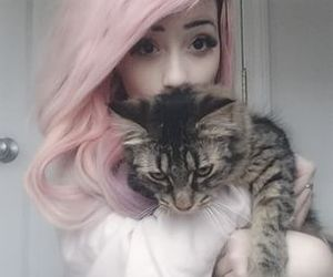 cat, hair, and pink hair image