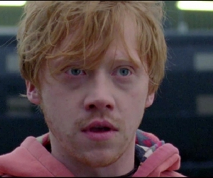 ginger, rup, and lego house image