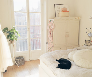 bedroom, cat, and light image