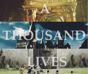 harry potter, book, and percy jackson image