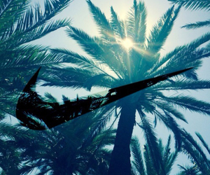 sun, summer, and palm trees image