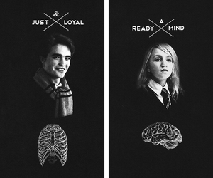 cedric diggory, harry potter, and luna lovegood image