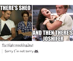 the hunger games, sheo, and mockingjay image
