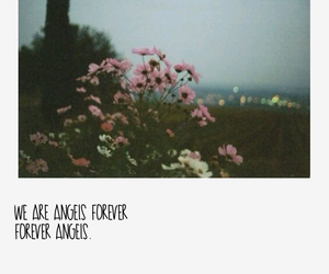angels, flowers, and city lights image