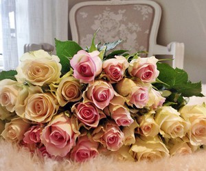 roses, sexy, and white roses image