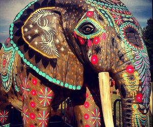 elephant, animal, and boho image