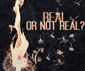 the hunger games, real, and katniss image