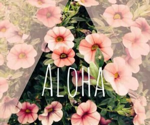 flowers, Aloha, and summer image