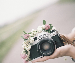 camera, flowers, and nikon image