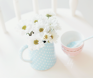 flowers, pastel, and daisy image