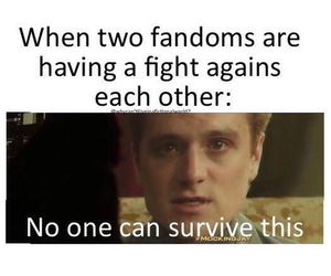 funny, fandoms, and survive image