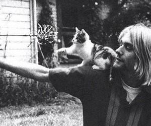 kurt cobain, cat, and nirvana image