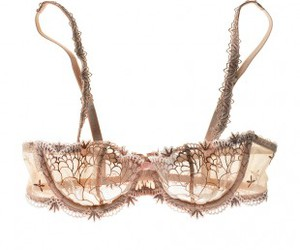 bra and lace image