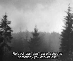 grunge, quotes, and rules image