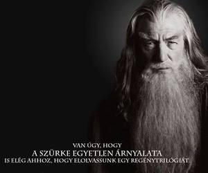 gandalf, magyar, and tlotr image