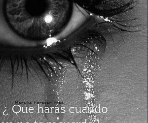 black and white, frases de amor, and lágrimas image