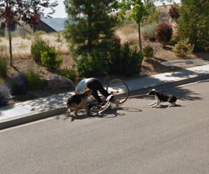 bike, crash, and google street view image