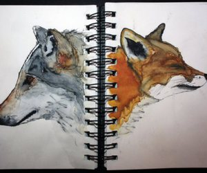 fox, wolf, and drawing image