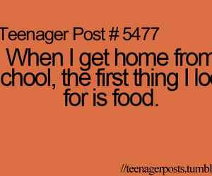 food, lol, and school image