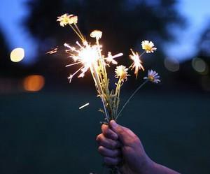 flowers, light, and night image