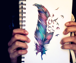 feather, bird, and drawing image