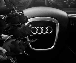 audi, car, and rose image