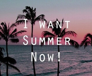 summer, beach, and now image