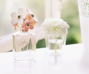 flowers, perfume, and daisy image