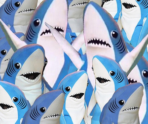 shark, katy perry, and background image