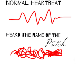 heartbeat, wing, and hush hush image