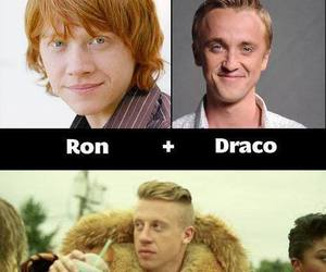 macklemore, draco, and harry potter image