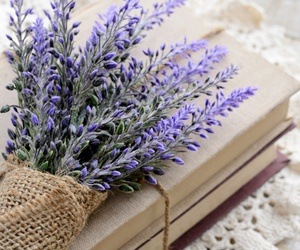 book, flowers, and lavender image