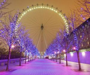 :), beauty, and london image