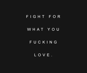 love and fight image